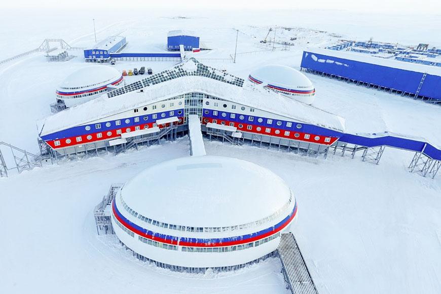 «Арктический трилистник» откроет новое направление в растениеводстве. Фото: wikimedia, mil.ru